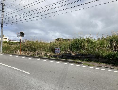 (売地)🐠🐠沖縄美ら海水族館近く🐠🐠本部町豊原 906.59坪/2,997㎡ リゾート施設や別荘など用途は様々✨